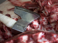 Schlachtabfälle von 200 Schafen und Ziegen im Wald bei Freiburg gefunden