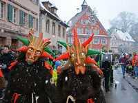 Fotos: Jubiläumsumzug der Käppli-Baschi in Malterdingen