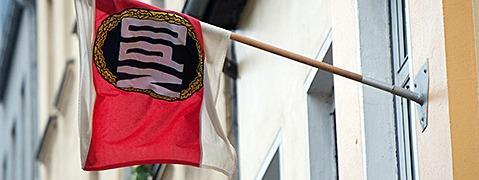 NPD wird vom Verfassungsgericht nicht verboten