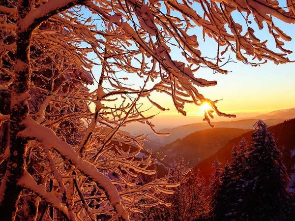 Winterzauber im Schwarzwald: der verschneite Feldberg.