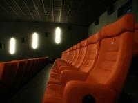 Darf ein Blindenhund mit ins Lahrer Kino?
