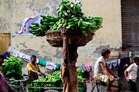 Eine Banane droht wegen eines Pilzes auszusterben