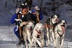 Fotos: Schlittenhunderennen in Todtmoos
