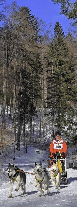 Die Strecke lag idyllisch im Wald.  | Foto: Wolfgang Scheu