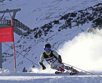 Vier Klassentitel für den Skiverband Schwarzwald