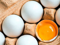 Können vegane Eier künstlich erzeugt werden?
