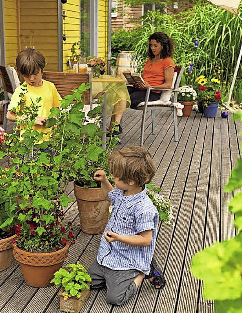 gewachsenes f r den terrassenboden haus garten badische zeitung. Black Bedroom Furniture Sets. Home Design Ideas