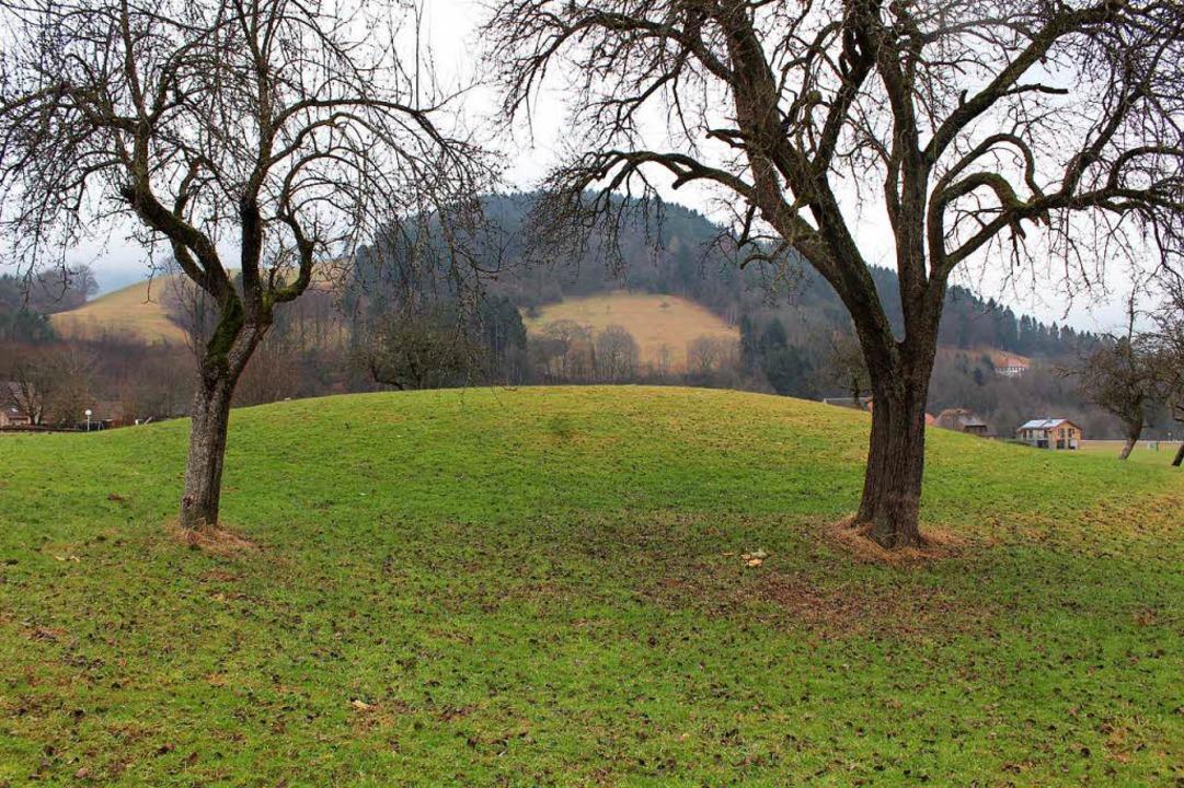 Unter diesem Rundhügel  ruhen in Oberr...hen Turmhügelburg, auch Motte genannt.  | Foto: Erich Krieger