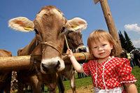 """""""Urlaub auf dem Bauernhof ist für viele Höfe unabdingbar"""""""