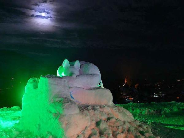 Nachts wurden die Schneeskulpturen in unterschiedlichen Farben beleuchtet.