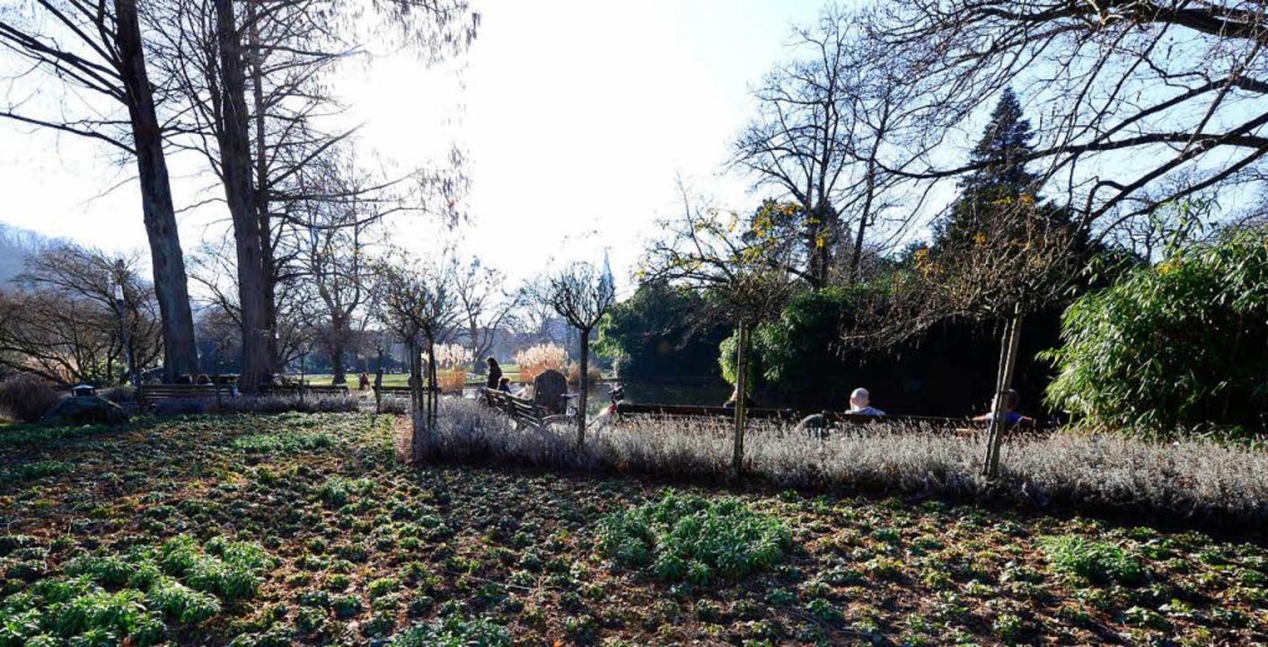 Noch sieht's im Stadtgarten rech...en sich trotzdem Sonnenanbeter nieder.  | Foto: Ingo Schneider