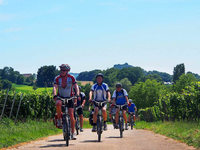 Tourismus in Bad Krozingen boomt – plus 12 Prozent