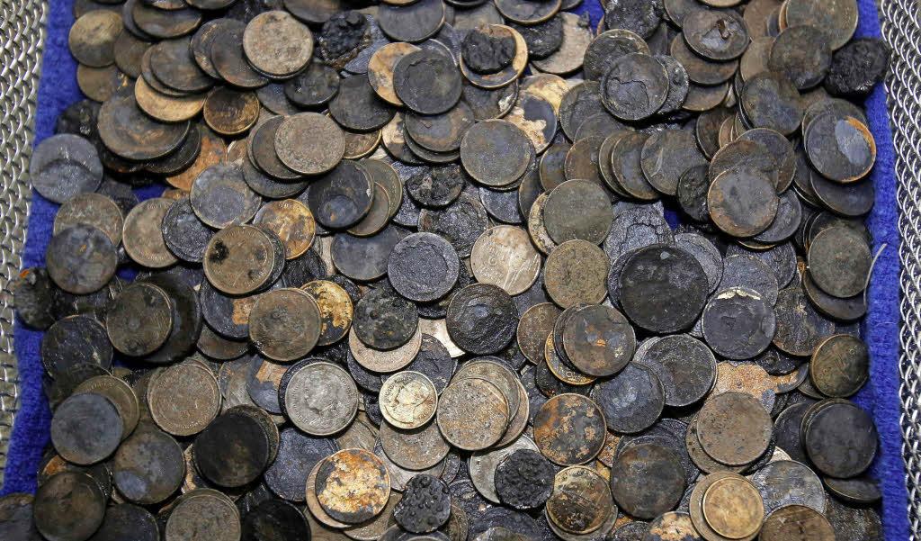 Ärzte holen tausend Münzen aus Schildkröte