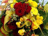 Weltfrauentag: Keinen Dank für die Blumen