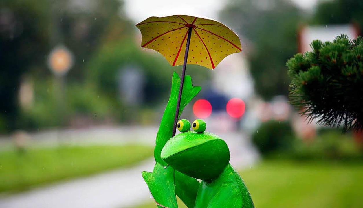 Der Wetterfrosch geht in Ruhestand (Symbolbild).  | Foto: Thomas Warnack