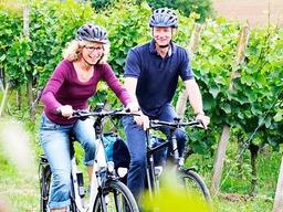 Komfort E-Bike ekone Classic