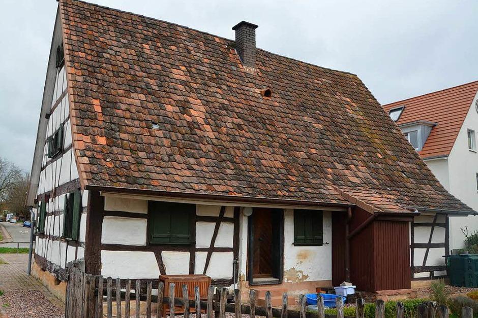 Einblicke ins Gaus-Haus (Foto: Max Schuler)