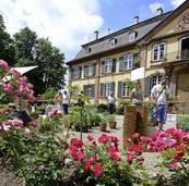 Am Wochenende ist Biogartenmesse im Schloss Ebnet