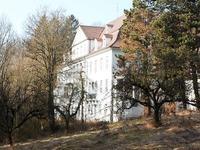 Bürgerentscheid: Die Positionen zum Altenberg im Überblick