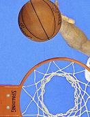 Die Schwenninger Basketball-Revolution