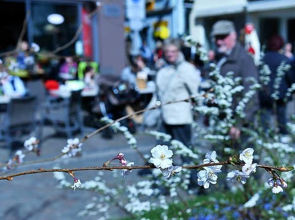 Impressionen vom Lahrer Blütensonntag