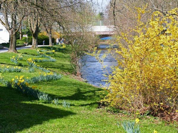 Impressionen vom Frühling in Bad Krozingen