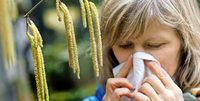 Pollen machen Allergikern zu schaffen