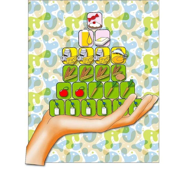 Aus diesen Elementen bestehen gesunde Mahlzeiten: die Ernährungspyramide     Foto: Illustration: Rita Reiser