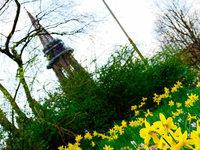 So schön ist der Frühling in Freiburg und der Region