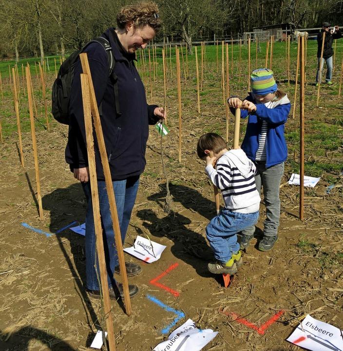 Baumpflanzaktion der SWE in Zusammenar...n und dem Waldkindergarten Windenreute  | Foto: Georg Voß