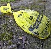 Stadt sieht bei liegen gebliebenen Hundehaufen keinen Handlungsbedarf