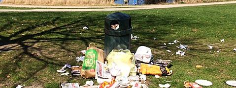 Grill- und Picknicksaison: Ärger um Müll im grünen Idyll