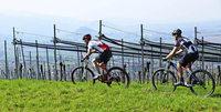 Crossduathlon auf der Bellenhöhe in Pfaffenweiler