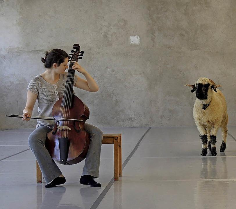 Tiere auf der Bühne – wie dieses Schaf   | Foto: zvg