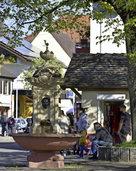 Lokalverein Haslach diskutiert über Plätze, Pläne und Probleme