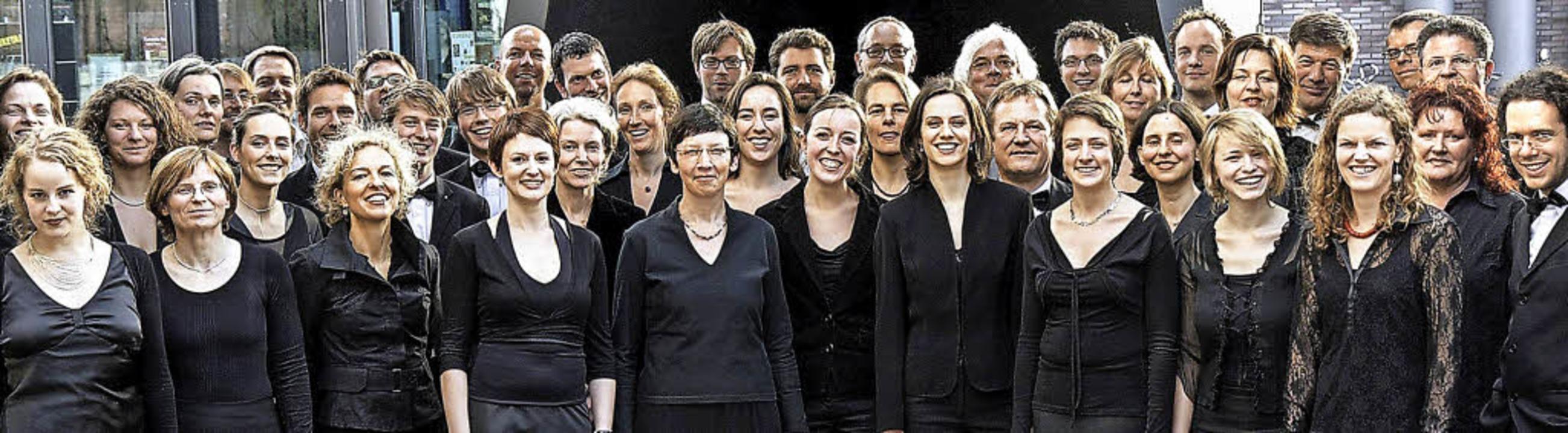 Ein Spitzenchor: die von Winfried Toll geleitete Camerata Vocale Freiburg  | Foto: Pro