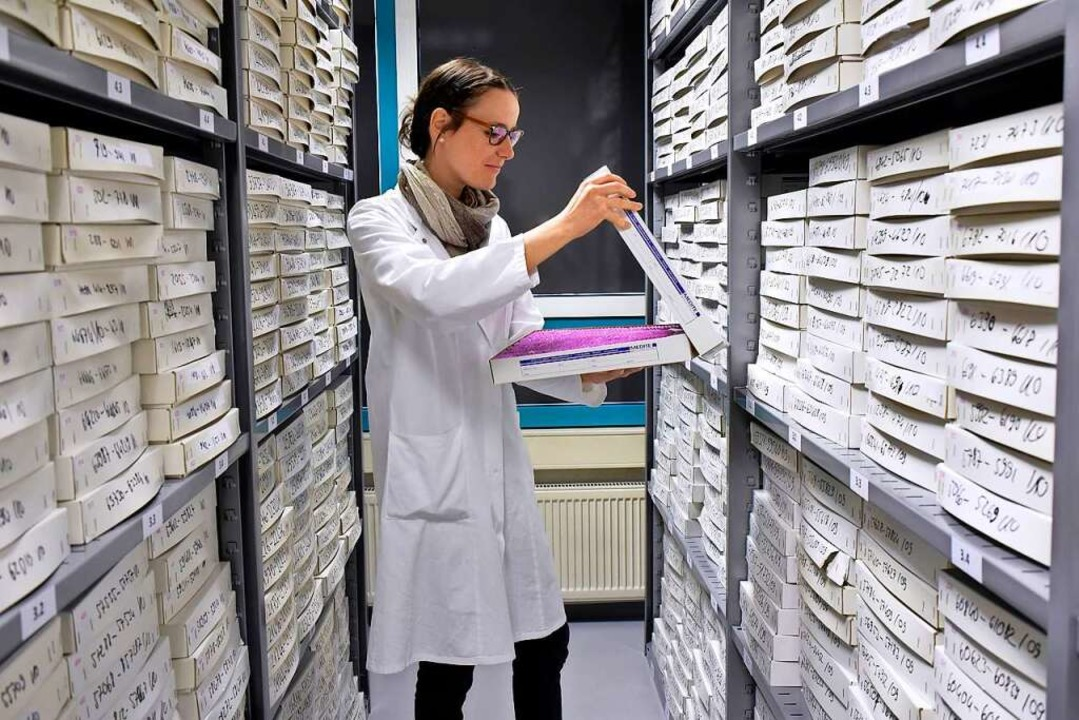 In der Gewebedatenbank lagern zwei Millionen Proben.    Foto: Thomas Kunz