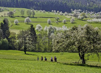 Traumhafte Frühlingslandschaft