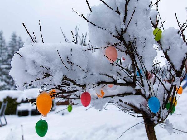 Mehrere Zentimeter Schnee liegen am Montag in Reitzenhain imErzgebirge (Sachsen) auf einem mit Kunststoff-Ostereiern geschmückten Baum.