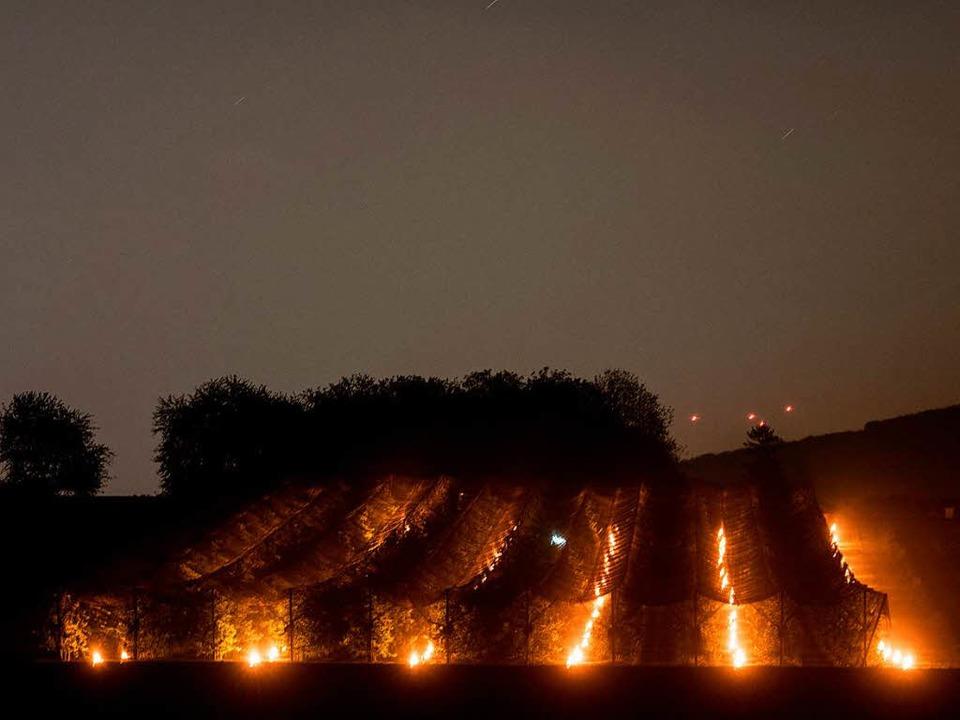 Kerzen gegen den Frost: Beim Obstgut S... Kerzen vor dem Kältetod zu bewahren.   | Foto: Patrick Seeger (DPA)