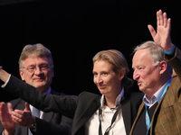 Gauland und Weidel zu AfD-Spitzenkandidaten gewählt
