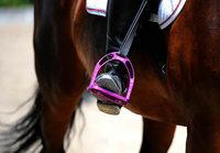 Pferde schlagen aus – 10-Jährige lebensgefährlich verletzt