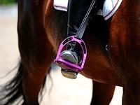 Pferde schlagen aus - 10-Jährige lebensgefährlich verletzt