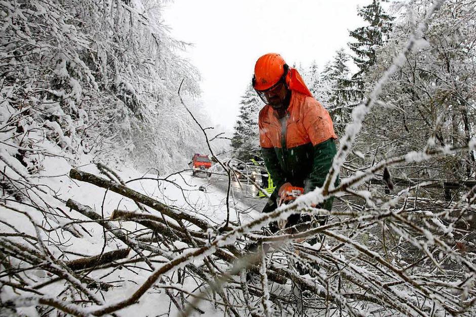 Ein Feuerwehrmann zersägt  einen durch die Schneelast umgestürzten Baum, der auf der L275 bei Ittenhausen (Foto: dpa)