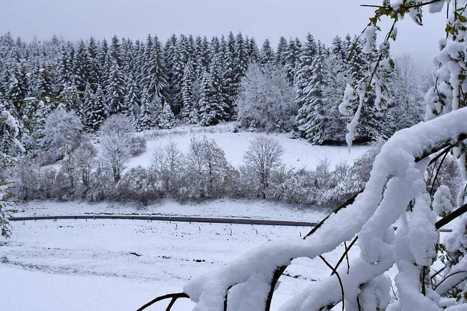Winterwunderland Kleines Wiesental (Foto: Schoch)