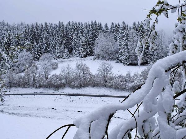 Winterwunderland Kleines Wiesental