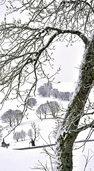 Der Winter feiert ein Comeback