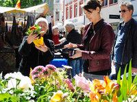 Fotos: Frühlingsfest Lörrach