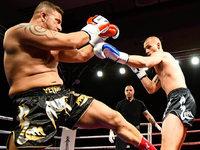 Fotos: 5. Freiburger Champions Fight Night