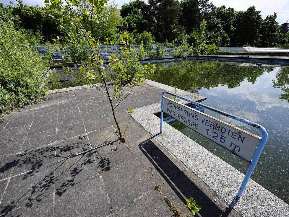 Köpfer verboten – und baden auch... Freibad dümpelt marode vor sich hin.     Foto: Ingo Schneider
